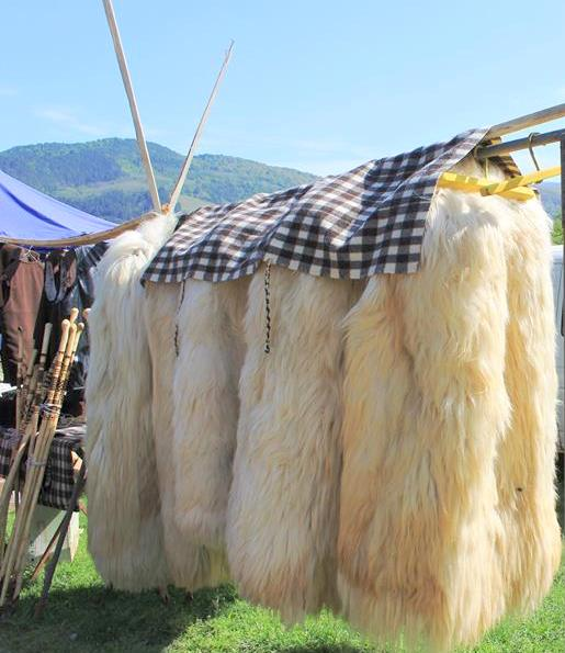 Pui-targul-traditional-ok